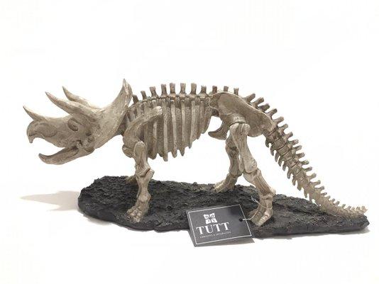 Decoração Esqueleto de Dinossauro de Resina